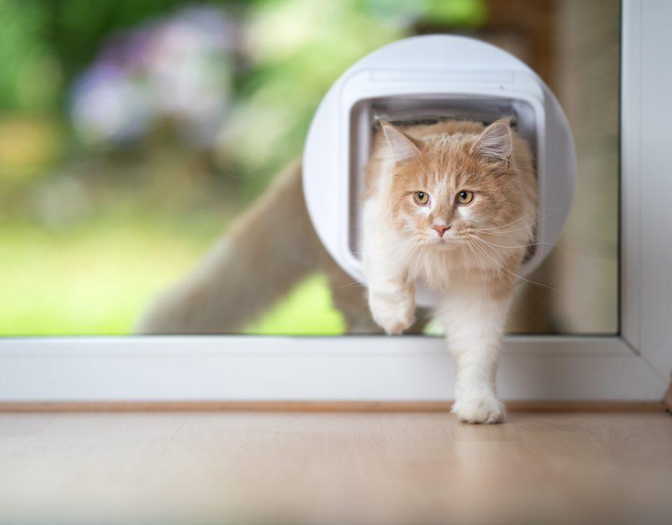 Kricker Glas Katzenklappe Hundeklappe in Terrassentür einbauen